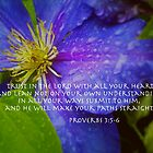 Proverbs 3:5-6 by imacurlygirl