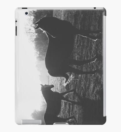 Two horses iPad Case/Skin