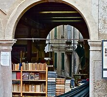 Asolo Open Library by Hayley Musson