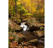 Autumn at Pearson Falls Photographic Print