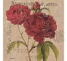 Vintage Burlap Floral 3 Photographic Print