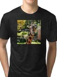Baringo Giraffe Tri-blend T-Shirt