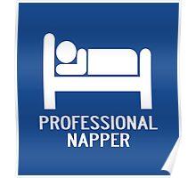PROFESSIONAL NAPPER Poster