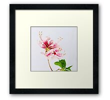 The Wild Azalea Framed Print