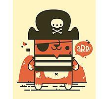 Pirate Kitty Photographic Print