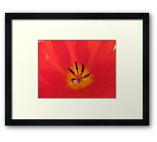 Witch Fingers Framed Print