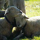 Love Ewe Sheep by ValeriesGallery