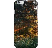 Cutting Through the Woods iPhone Case/Skin