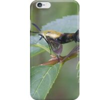 Swing Your Partner iPhone Case/Skin