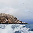 Bass Rock Firth of Forth Scotland by youmeus