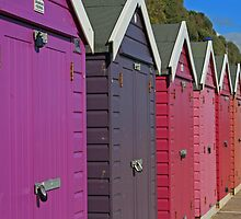 Sheds Of Any Colour But Grey by RedHillDigital