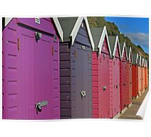 Sheds Of Any Colour But Grey Poster