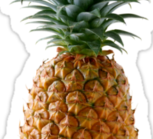 pineapple Sticker