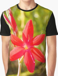 Schizostylis coccinea Graphic T-Shirt