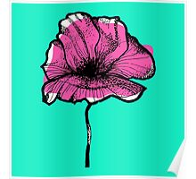The solitary poppy Poster