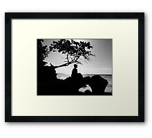 A Pirate And A Genius  Framed Print