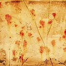 Rust And Weeds Abstract 1 by Fara