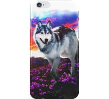 Tundra Sunset iPhone Case/Skin