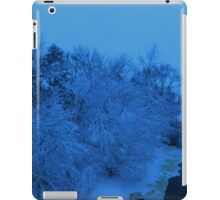 Ice Tree iPad Case/Skin