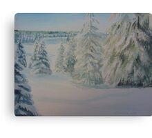 Winter In Gyllbergen Canvas Print