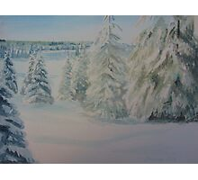 Winter In Gyllbergen Photographic Print
