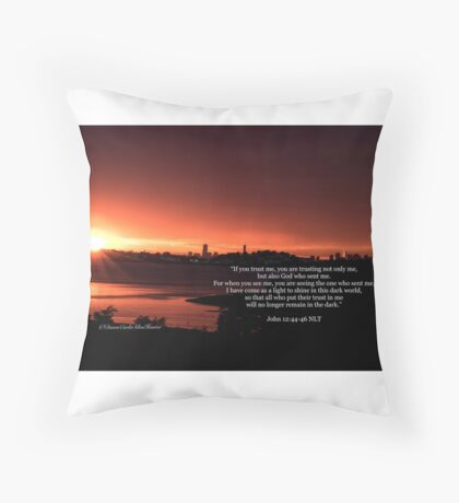 John 12:44-46 Throw Pillow