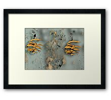 Modern Mushrooms Framed Print