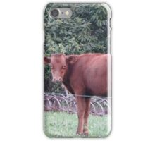 A Bovine Pose iPhone Case/Skin
