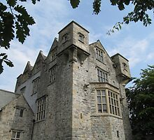 Donegal Castle. by Lawson Clout