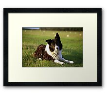 A moment of reflection. Framed Print