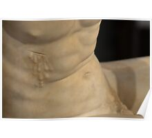The Dying Gaul - Washington D.C. - Plate No. # VI Poster