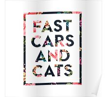 Fast Cars and Cats Poster