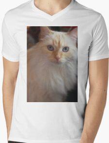 My Cat Pinky Mens V-Neck T-Shirt