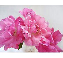 No Ordinary Roses Photographic Print