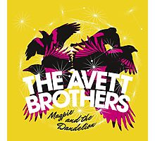 Magpie and the dandelion the avett brothers dolly Photographic Print