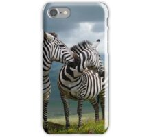 Two Zebras iPhone Case/Skin