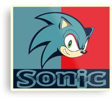 Sonic Metal Print