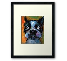 Cute Boston Terrier puppy dog portrait by Svetlana Novikova Framed Print