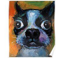 Cute Boston Terrier puppy dog portrait by Svetlana Novikova Poster