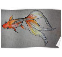 Goldfish Pond (close up #6) Poster