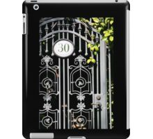 Door 30 iPad Case/Skin