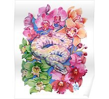 """""""Year of the Snake"""" - Chinese Zodiac Watercolour  Poster"""