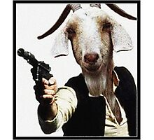 Mr Sunday / Goat Han Solo Photographic Print
