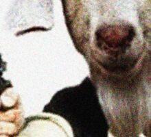 Mr Sunday / Goat Han Solo Sticker
