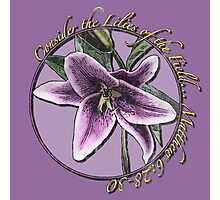 Consider the Lilies of the Field Photographic Print