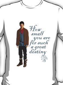 Great Destiny (light) T-Shirt