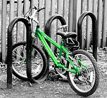 Green Bicycle by Scott Mitchell