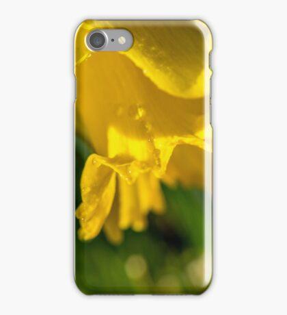 Daffy Macro iPhone Case/Skin