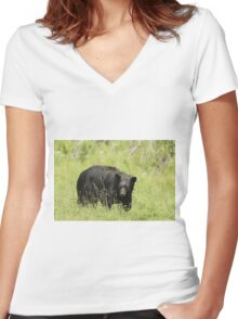 Black Bear in a pasture Women's Fitted V-Neck T-Shirt