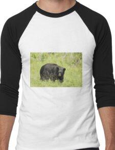Black Bear in a pasture Men's Baseball ¾ T-Shirt